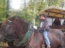 Kutschenfahrt 2009_6
